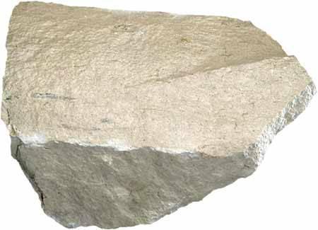 Roche calcaire
